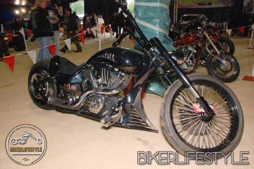 bulldog-bash-273