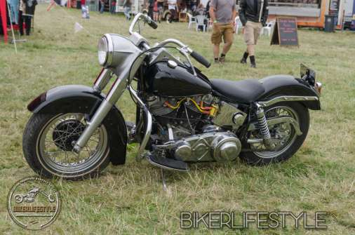bulldog-bash-1021