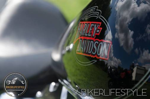 harley-tank-emblems-027