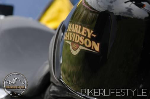harley-tank-emblems-029