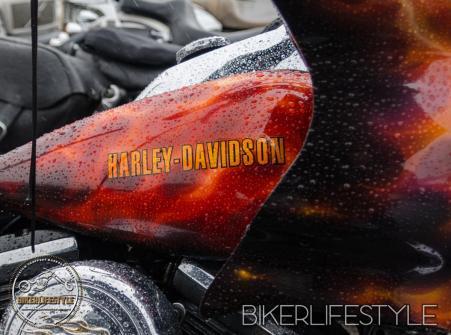 harley-tank-emblems-311