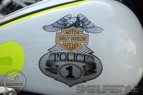harley-tank-emblems-507