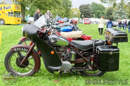 himley-classic-show-137
