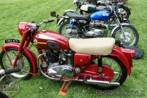 himley-classic-show-140