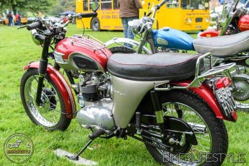 himley-classic-show-144