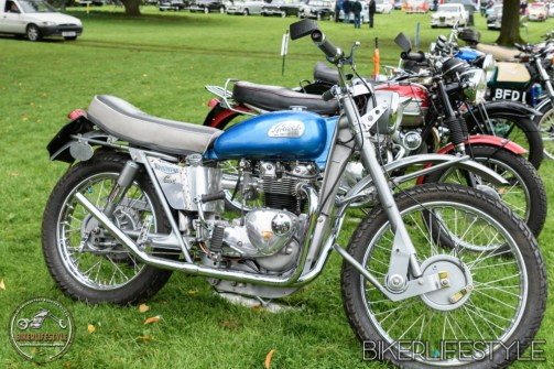 himley-classic-show-145