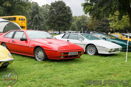 himley-classic-show-182