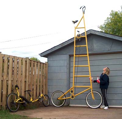 tall bike, little guy