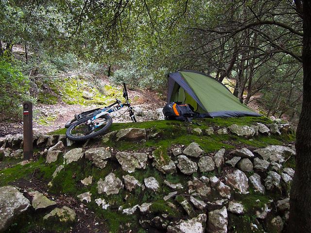 Mallorca Wildcampen