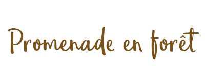Marque vetement bebe, marque vetement enfant, Vetement enfant, Vetement bebe, Deco chambre, Vetement made in France, Cadeau naissance, Cadeau bebe fille, Liste naissance, Liste bebe, mode bebe, liste de naissance, petit bateau, nobodinoz, smallable, collection automne, moodboard, tendance automne