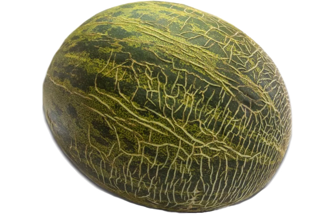 Melon Distribución de Fruta Bilcosa Mercabilbao Melón