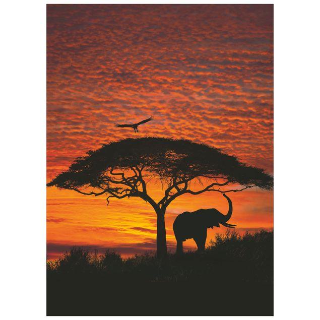 Verde (confezione da 8) a. Carta Da Parati National Geographic Tramonto Africano