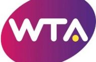 Pronostic tenis Bogdan - Cirstea (17.07.2017)