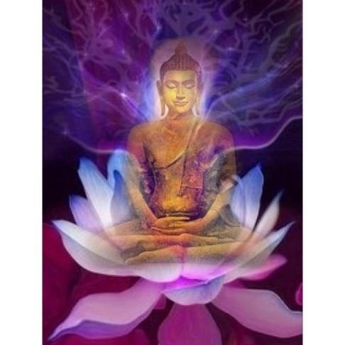 Lotus Çiçeği Anlamı