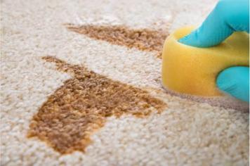 Halı Temizleme İpuçları