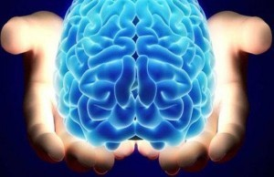 beyin hakkinda 10 1 300x194 - Brain, meaning, within the framework of a brief overview and history