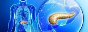 a2 22 300x112 - The functions of the pancreas, pancreatitis and diabetes