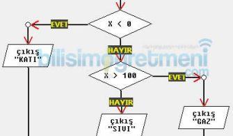 Algoritma ve Akış Diyagramı Örnekleri 3