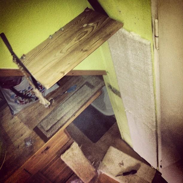 umbau der katzen kletterwand ist abgeschlossen endlich ein breiter bequemer aufstieg - Sky Wohnzimmer Umbau