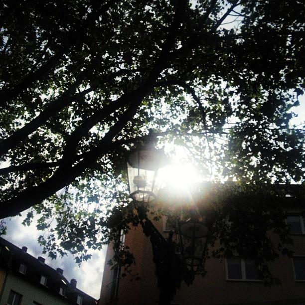 Morgenlicht auf dem Friedensplätzchen :-)