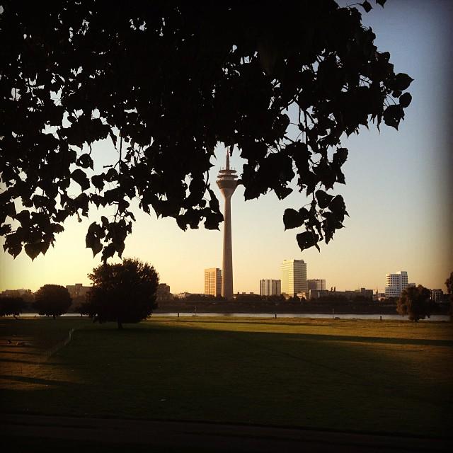 Ein klarer & frischer Herbstmorgen am Rhein.