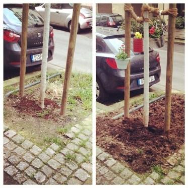 """""""Ab ins Beet"""" – jetzt auch für Baumscheiben und """"MicroVorgärten"""" ;-)"""