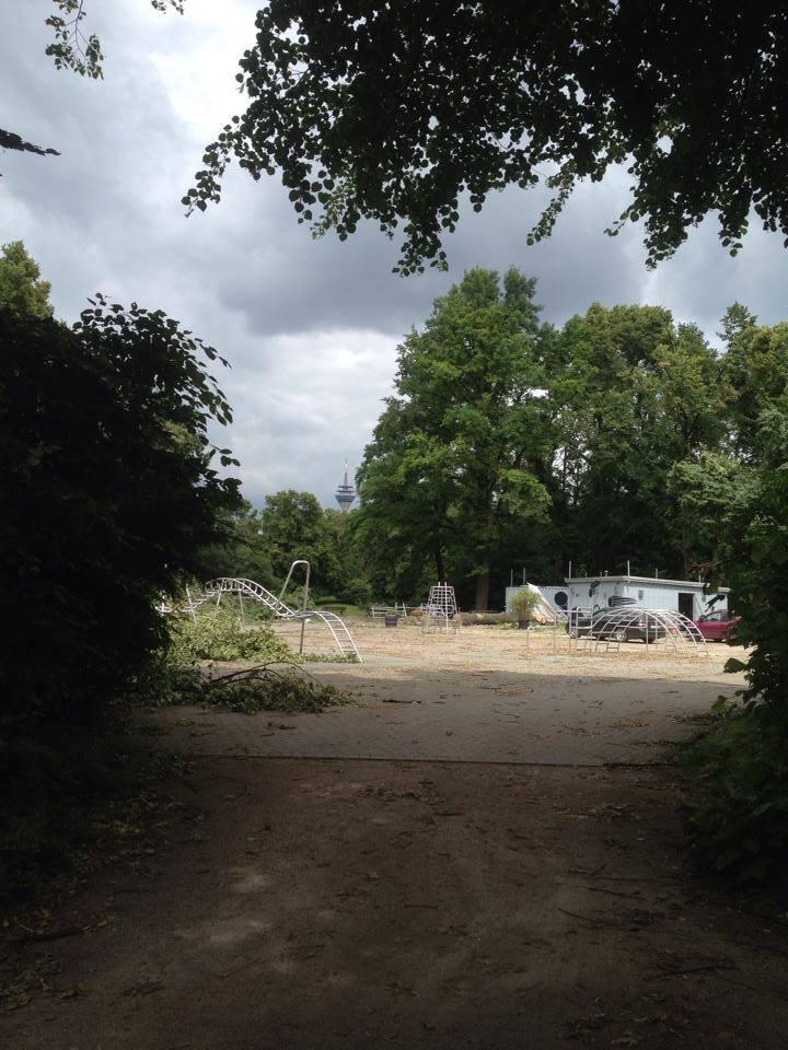 Sturmschäden in Düsseldorf und die Folgen