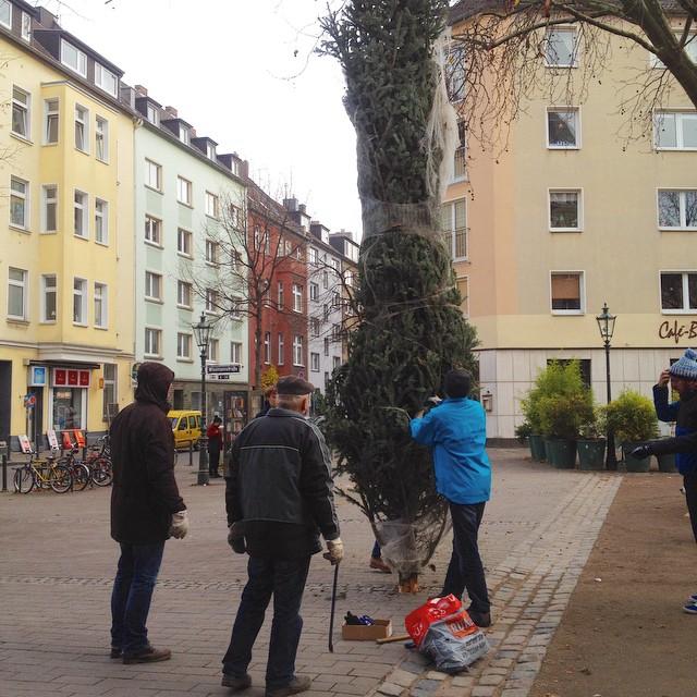 ... und das Friedensplätzchen hat wieder 'nen einen Weihnachtsbaum :-)