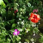 Blumeninsel an der Ecke