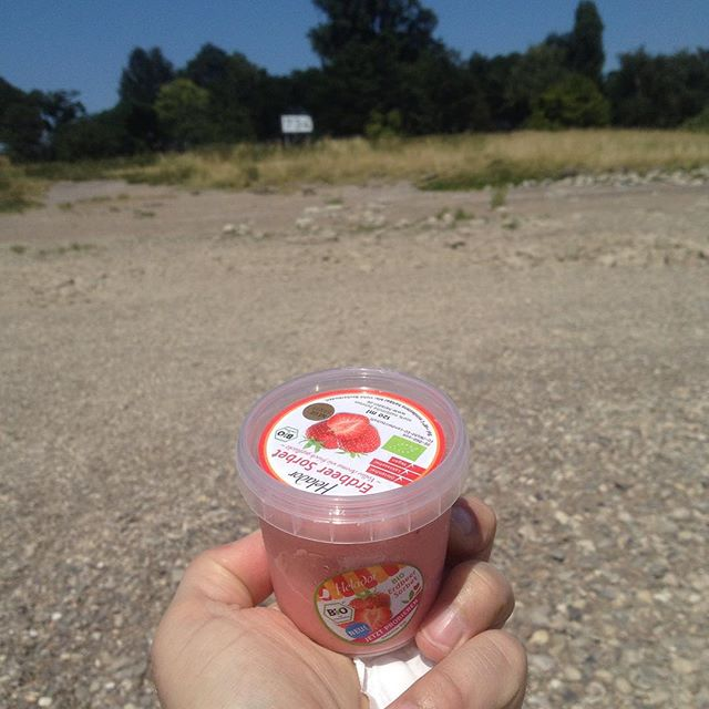Kleine Eispause am Rheinstrand :-)