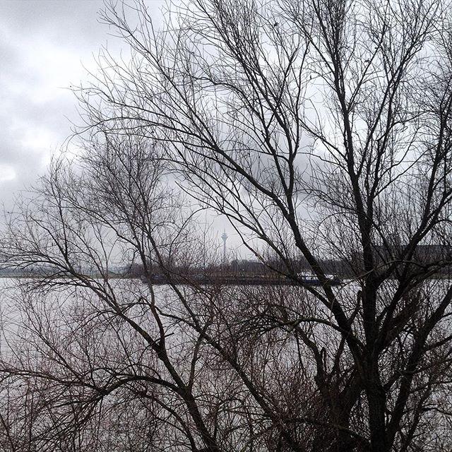 Heute ist wieder das perfekte Wetter um mit einem guten Farbfilm perfekte schwarz-weiß Photos zu machen ;-)