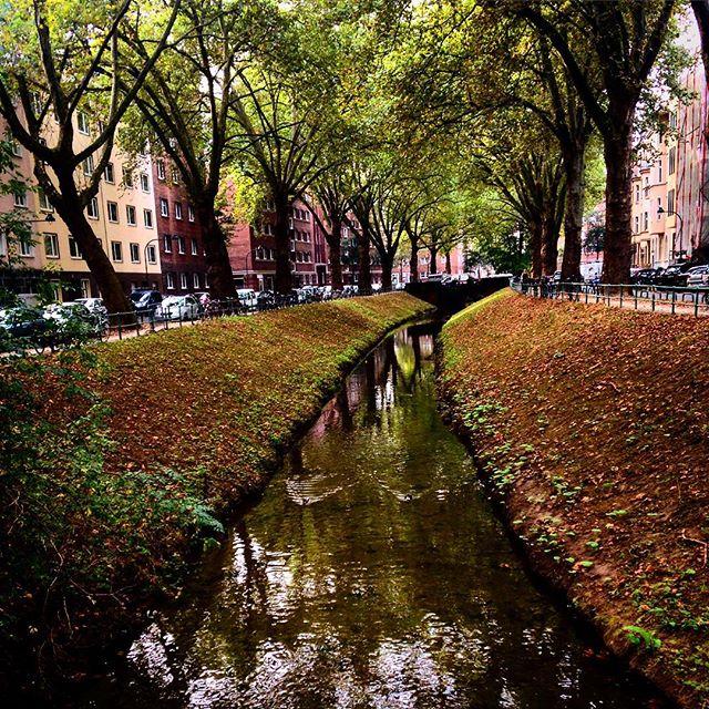 Und ganz, ganz langsam kommt der Herbst an die Düssel :-)