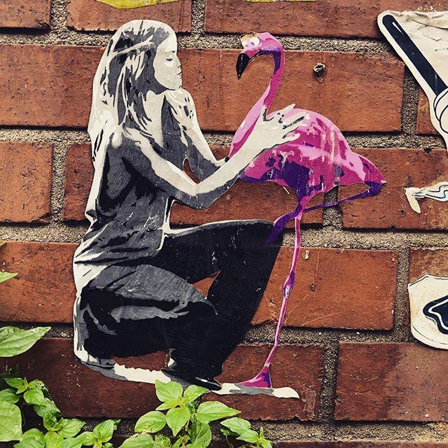 streetart rundgänge in düsseldorf ?
