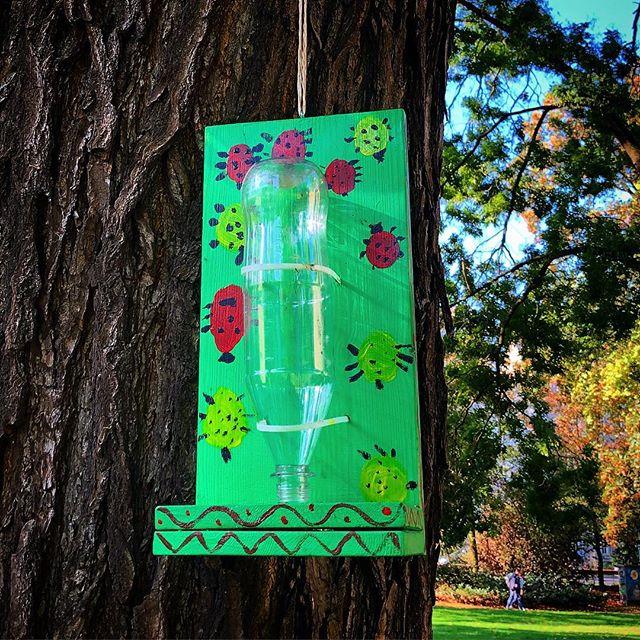 Eine wirklich schöne Idee - selbstgebastelten Futterstation für die vielen Tiere im Park :-) #basteln #elternzeit #kinder