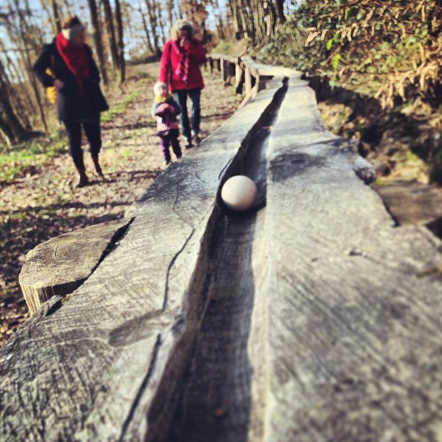 … komm wir gehen in den Wald und 'spielen' mit der Kugelbahn. Im Wald bei Zilshausen kann man auf zwei Bahnen quer durch den Wald die Kugeln rollen lassen – die längste ist 400 Meter lang und macht durch die vielen Aktivitäten dazwischen richtig Spaß. Und dies nicht nur den Kleinen