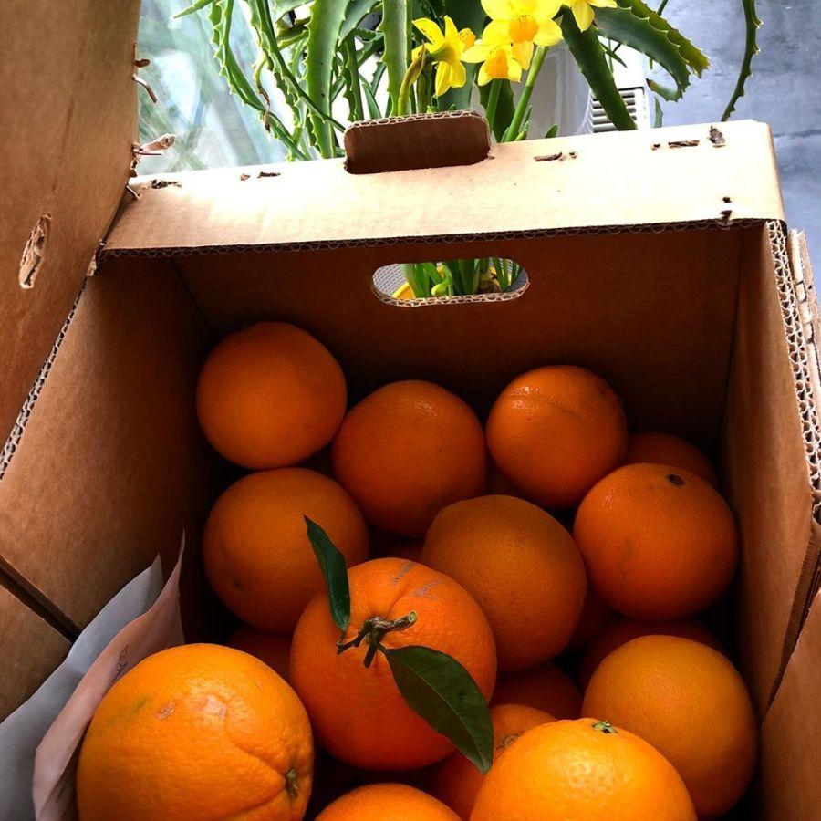 Ein ganzer Karton mit Vitaminen ist wieder bei uns angekommen :-) Frische, leckere Orangen von unserem @crowd_farming Bauer aus Spanien. Die Orangen sind nicht gewachst oder gespritzt oder in Plastik verpackt oder oder oder… einfach nur geerntet, verpackt und verschickt. Die Orangen die wir bekommen sind köstlich, ehrlich & fair. @veganleli kommt ihr nachher vorbei und holt euren Anteil ab? :-)