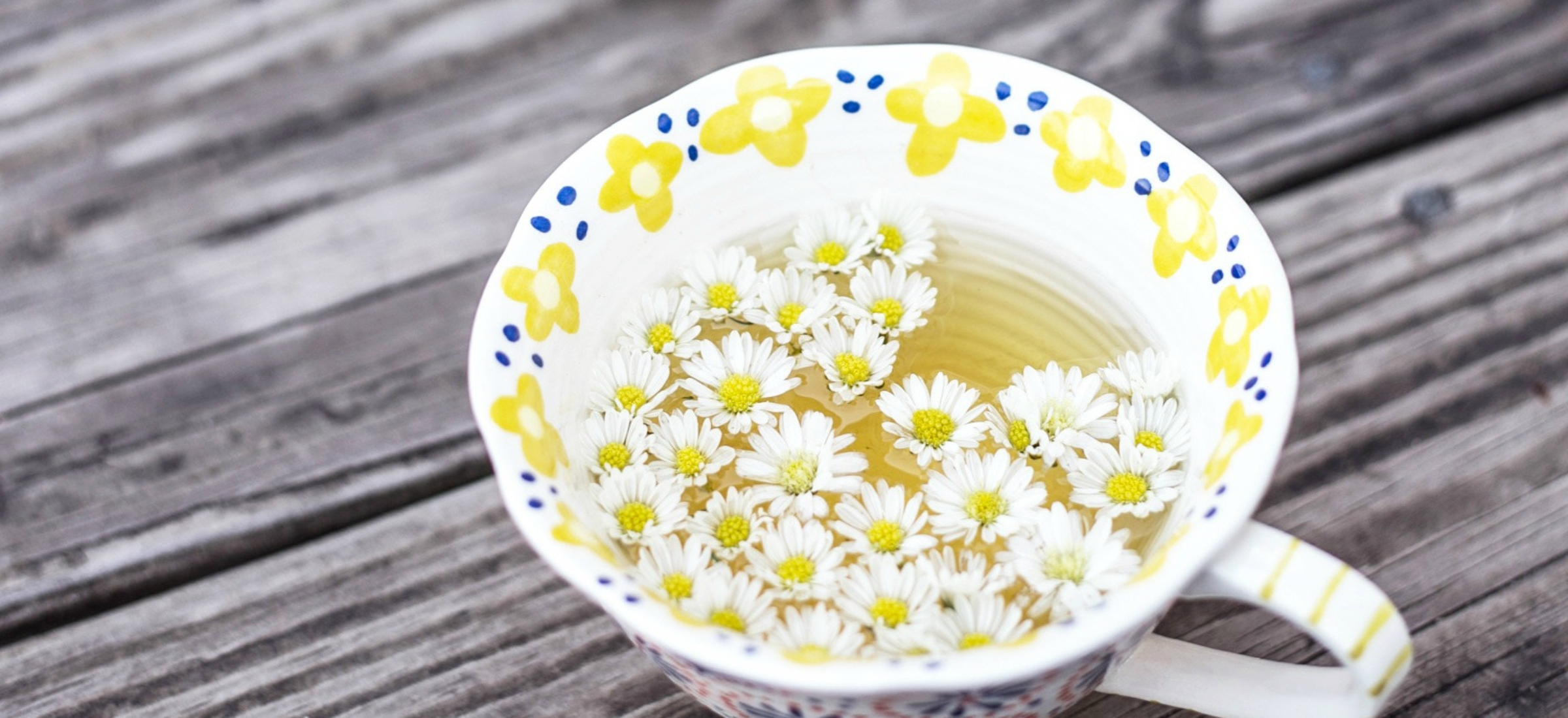tea cup with flowers solil