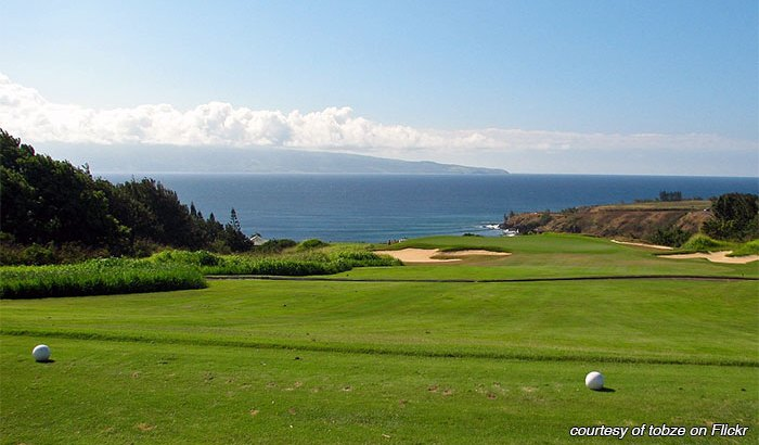 Kapalua golf course