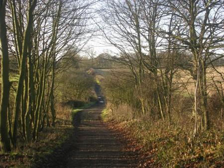 Hummerbeck Lane