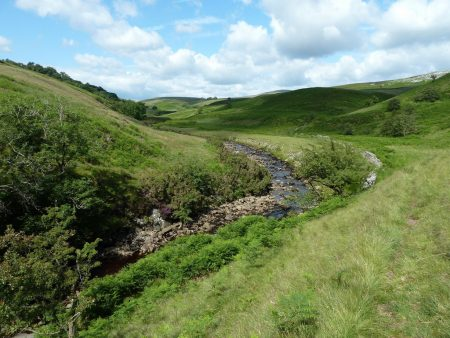 Leck Beck below Ease Gill