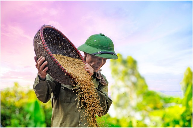 Will we be patient in our evangelism just as the farmer is patient with his seed? (image courtesy of pixabay.com)