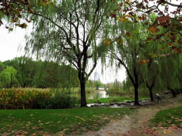 A pretty view in Century Park. Pudong, Shanghai, China, Asia.