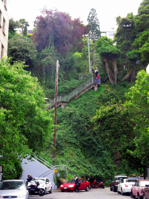 The lower end of Filbert Steps, descending the steep eastern slope of Telegraph Hill. San Francisco, United States, North America.