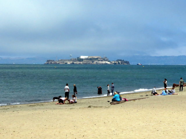 Nice view of Alcatraz from Crissy Field. (Alcatraz--you just can't escape from it!) San Francisco, United States, North America.