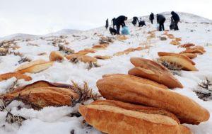 Erzurum esnafı doğal afetlerden sonra doğaya 2001 ekmek bıraktı: 'Hayvanlara huzur vermeyen toplum huzur bulamaz'