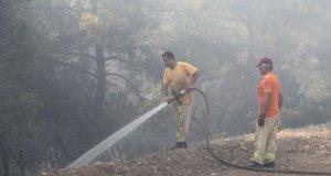 Menderes'teki orman yangınıyla ilgili tutuklanan adam: Sigaramı yanlışlıkla ağaçlık alana düşürdüm