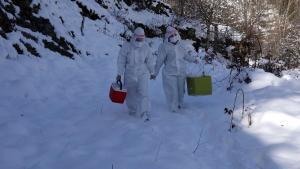 Trabzon'da filyasyon ekibi yoğun kar yağışına rağmen çalışıyor