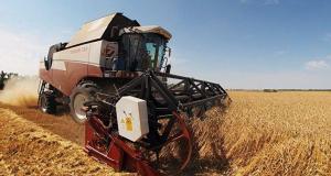 Türkiye, Rusya'dan tahıl alımında liderliğini korudu