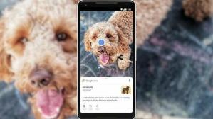 Google Lens çevrimdışı özelliğiyle güncellendi