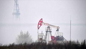 OPEC: Küresel petrol talebi artacak